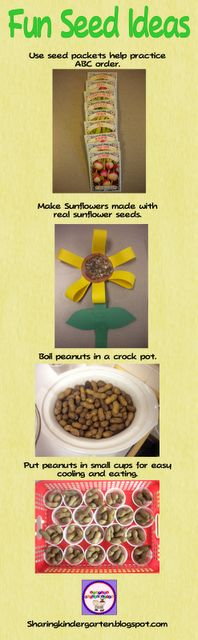 Some fun ideas to learn about seeds!
