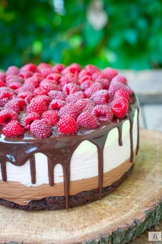torcik czekoladowy, tort, tort czekoladowy, ciasto czekoladowe, ciasto malinowe, ciasto z malinami, torcik z malinami, deser z malinami Raspberry, Strawberry, Cake Creations, No Bake Cake, Cake Recipes, Cheesecake, Food And Drink, Appetizers, Cooking Recipes
