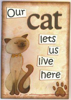 cats, I LOVE THEM !!!