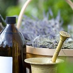 Herbs were the first medicines and they still work when you know what to do with them. We like herbs that grow around us, that we know about and that our bodies can understand too because we're in the same environment. Still Working, When You Know, Our Body, Herbal Remedies, Bodies, Barware, Herbalism, Medicine, Environment