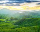 Wallpaper superb cu Malaysia in diferite dimensiuni : 1024x768, 1280x800, 1366x768, 1920x1200