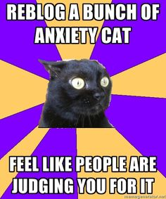 haha i feel this way sometimes - Cashier Humor - Cashier Humor meme - - Anxiety Cat. haha i feel this way sometimes The post Anxiety Cat. haha i feel this way sometimes appeared first on Gag Dad. What Do You Mean, Look At You, Anxiety Cat Meme, Anxiety Humor, Anxiety Girl, Anxiety Quotes, Social Anxiety Memes, Bipolar Memes, Anxiety Thoughts