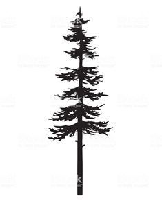 Vector isolated silhouette of a coniferous tree. Can be used in design, illustration, tattoo. vector isolated silhouette of a coniferous tree can be used in design illustration tattoo - arte vetorial de stock e mais imagens de abeto royalty-free Tree Silhouette Tattoo, Pine Tree Silhouette, Dog Silhouette, Pine Tattoo, Wood Tattoo, Illustration Tattoo, Ink Illustrations, Forest Tattoos, Nature Tattoos