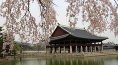 turismo corea del sur - Buscar con Google