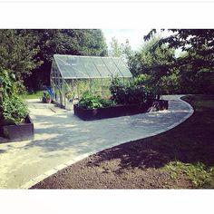 Kitchengarden with raised beds / min köksträdgård med upphöjda odlingsbäddar