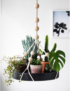 Feeling Green | 10 Plant Ideas from IKEA | Poppytalk