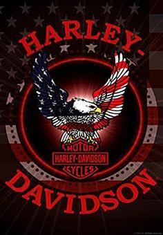 Harley Davidson Motorcycle's