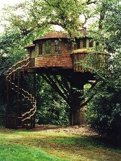 A Tree House with spiral stairs,rounded rooms and dome roofs.