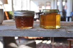 Honey Honey everywhere! | HoneyBook