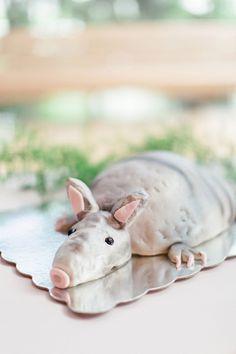 cutest armadillo cake!! | Brooke Images #wedding