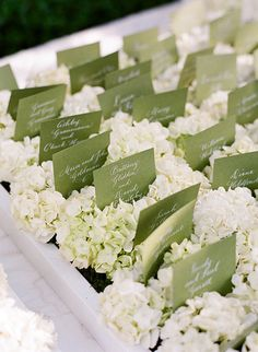 I love hydrangea! Display your calligraphed escort cards on a bed of fluffy white hydrangeas arranged on low trays. Pin aviation wings to the card. Wedding Reception Table Decorations, Wedding Table, Reception Ideas, Reception Seating, Pretty Things, Olive Wedding, Orange Wedding, Ideas Geniales, Wedding Place Cards
