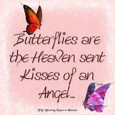 Beautiful Butterflies from Heaven
