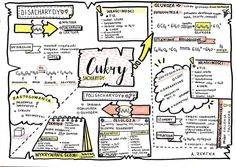 School Hacks, School Projects, Medicine Notes, Science Notes, English Writing Skills, Organic Chemistry, School Notes, Biochemistry, Study Notes