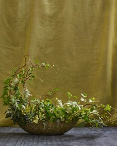 Ivy, winding around branches of curly willow adds a sense of movement to this mostly foliage arrangement. A mix of succulents and fuzzy gray dusty miller weaves in texture