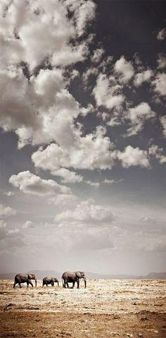 Under the Big Sky (Photographer: Klaus TJ)