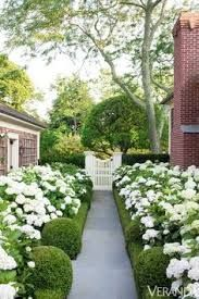 Image result for southampton landscaping beach grass
