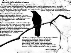 Your Animal Spirit Guide for February 8 is The Raven – Witches Of The Craft® Wiccan Spell Book, Wiccan Spells, Magick, Witchcraft, Raven Spirit Animal, Animal Spirit Guides, Raven Totem, Animal Meanings, Animal Totems