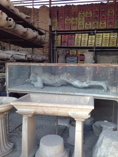 Pompeii--this is the cast made from the space where a body evaporated in the heat of eruption. These are all over in the city. It's an amazing and moving place.