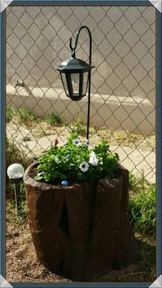 Juniper Tree Stump Planter, Carve out tree stump deep enough to plant annual flowes, drill holes for water to drain, Varnish with color you prefer, Drill hole to add Solar Lights, Buy prefered annual flowers, plant.