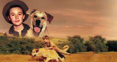 disneys old yeller movie | Watch Old Yeller | Disney Movies Anywhere