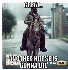 The Walking Dead Season 6 Episode 15 Spoilers: Carol Survives Brutal Savior Attack – Morgan Rides to the Rescue Walking Dead Funny, Walking Dead Returns, Walking Dead Season 6, Walking Dead Tv Show, Fear The Walking Dead, Carl Grimes, Zombies, Twd Memes, Funny Memes