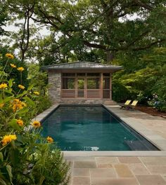 Cleveland Park Treehouse - Contemporary - Pool - dc metro - by Cunningham   Quill Architects