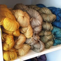 Candlewick, Winter Wheat and Thyme. Love those three from the left, Madelinetosh