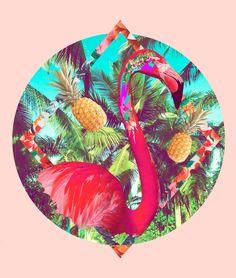 Tropicool - The Shoppeuse