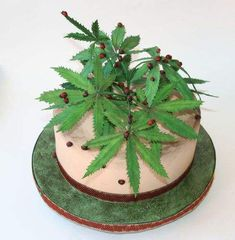 Bolos Bob Marley, Crazy Birthday Cakes, Birthday Ideas, Cannabis, Cake Recipes, Dessert Recipes, Desserts, Sun Cake, Opening Day