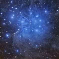 An incredible look at the Pleiades star cluster (M45) imaged by California astrophotographer Tony Hallas.