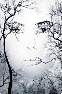 #photography #illusions