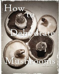 How to Dehydrate and Preserve Fresh Mushrooms