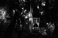 Nuit Européenne des Musées Mai 2014 Musée Anatomie et d'Histoire Naturelle, Testut Latarjet, visite à la lampe torche des collections  Copyright: Eric Le Roux / Université Claude Bernard Lyon 1