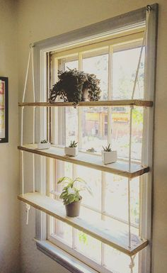 CUSTOM / Light Pine / Rope / Hardware / Minimilist / Hanging Shelf Unit - Custom wooden shelves made to order. Indoor gardens, succulent displays, the spread of plants, cutt - Playroom Organization, Organizing, Art Studio Organization, Small Space Organization, Storage Organization, Home And Deco, My New Room, Decor Room, Home Decor Ideas