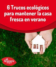 6 trucos ecológicos para mantener la casa fresca en verano.