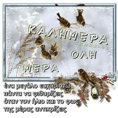 Good Morning, Quotes, Buen Dia, Quotations, Bonjour, Bom Dia, Qoutes, Quote, Buongiorno