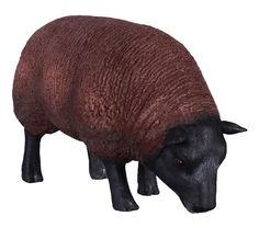 Fibreglass Sheep Statue Texelaar Ewa Small  Dimensions : Length : 46cm, Width : 22cm, Height : 30cm, Weight : 2.5kg
