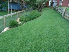 Sloped Yard With Green Zoysia Grasses And Wooden Fences : Outdoor Landscaping With Zoysia Grasses Zoysia Sod, Zoysia Grass, Outdoor Landscaping, Outdoor Gardens, Landscaping Ideas, Backyard Ideas, Garden Ideas, Sloped Front Yard, No Mow Grass