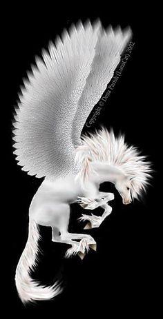 Pegasus a common mythological creature Pegasus, Magical Creatures, Fantasy Creatures, Beautiful Creatures, Fantasy World, Fantasy Art, Winged Horse, Unicorn Art, Mythological Creatures