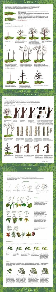 How to Draw Trees - An amazing three-part tutorial, by calisto-lynn.