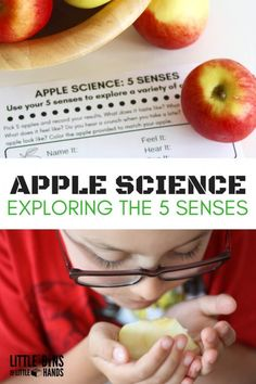 Apple science senses activity to explore the 5 senses through hands on early learning. Fall science and apple science experiments that are easy to set up and fun for young kids. Perfect for fall STEM activities and apple preschool science activities. 5 Senses Preschool, 5 Senses Activities, Preschool Science Activities, Apple Activities, Autumn Activities For Kids, Kindergarten Learning, Science Experiments Kids, Science For Kids, Science Lessons