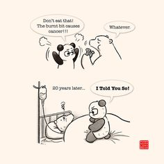 I told you so. Cute Panda Cartoon, Panda Funny, Cute Couple Cartoon, Polar Bear Drawing, Cute Bear Drawings, Baby Panda Bears, Chibi Cat, Cute Love Stories, Panda Love