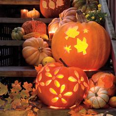Pumpkin Carving Templates...  Creating designs on your pumpkins, like the ones shown here, is easier than you think. Kits are available everywhere–from dollar stores to high-end kitchen shops–but you really don't need a kit. Assemble your own with basic kitchen tools such as a sharp knife, a smaller paring knife, and wide, sturdy spoons to clean out the seeds and stringy pulp. A small handsaw is also helpful.