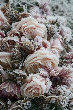 Palette for florals via Winter Ice Palace / Wedding Style Inspiration / LANE (instagram: the_lane)