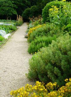 Landscape Design, Garden Design, Sun Garden, Walled Garden, White Gardens, Aga, Pathways, Yard Ideas, Horticulture