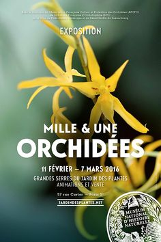 Exposition Mille & Une Orchidées du 11 février au 7 mars 2016 Muséum national d'Histoire naturelle http://www.pariscotejardin.fr/2016/02/exposition-mille-une-orchidees-du-11-fevrier-au-7-mars-2016/