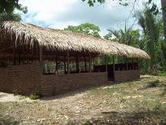 Reentrâncias: Projeto de Galinha Caipira na Comunidade de Marajá- Bequimão/MA