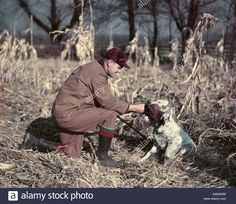Image result for 1950s quail hunting photos