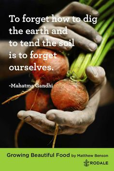 To forget how to dig the earth and to tend the soil is to forget ourselves. - Mahatma Gandhi | Inspirational Quotes about Gardening