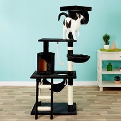 Cat trees are a vertical territory that allows cats to enjoy their own space and allows them to have their own home inside of yours. They also serve as a safe haven for timid cats, allowing your kitty to stay relatively out of the open while maintaining a sense of security. #cat #catlovers #catfurniture #petlife #cattrees #catcondos #dogappareldeals #affiliatelink Cat Tree Condo, Cat Condo, Hanging Hammock, Hanging Rope, Cat Towers, Sisal Rope, Cat Scratching Post, Old Cats, Little Kittens